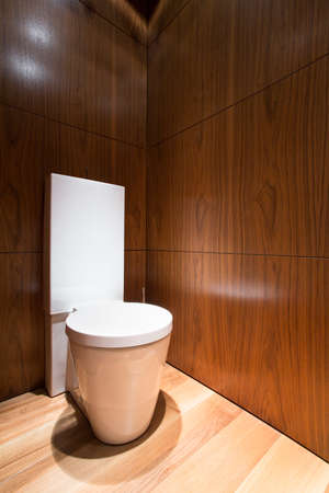 loo: Vertical view of small wooden toilet interior