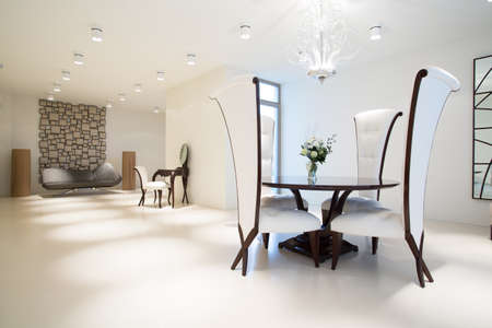 the white house: Picture of exclusive interior with modern furniture