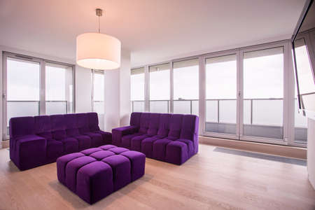 contemporary living room: Violet modern lounge in contemporary living room