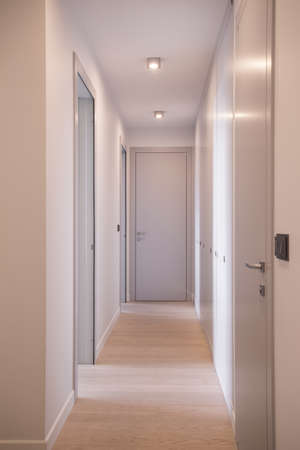 anteroom: Vertical view of long corridor with doors