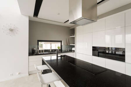 Image of fancy black and white kitchen in new villa