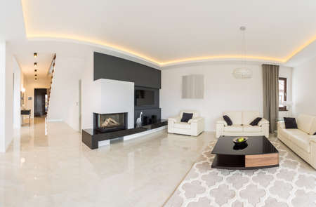 lounge: Image of spacious light living room with decorative carpet