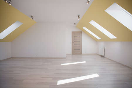 commodious: Image of spacious light attic room with wooden door