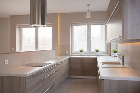 commodious: Picture of new style commodious kitchen in light colors