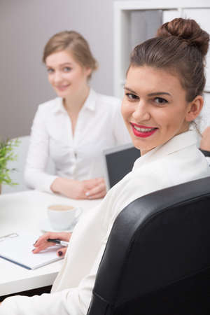 interview: Applicant and interviewer during job interview meeting
