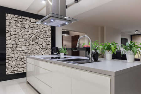 Photo of beautiful white kitchen island with decorative wall Фото со стока