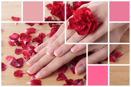 spa collage: Close-up of female hands and rose petals Stock Photo