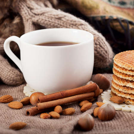 fashion background: Hot drink, cinnamon and nuts perfect for a winter time