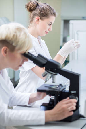 scientific research: Photo of researcher conducting microscopic examination of sample Stock Photo