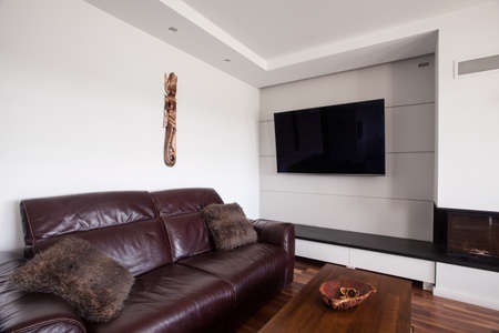 kanapa: Brown leather couch in the living room