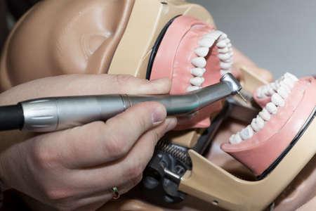 hand gripper: Professional dental equipment and dental examination training