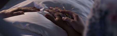 palliative: Panorama of person assisting elderly dying hospice patient