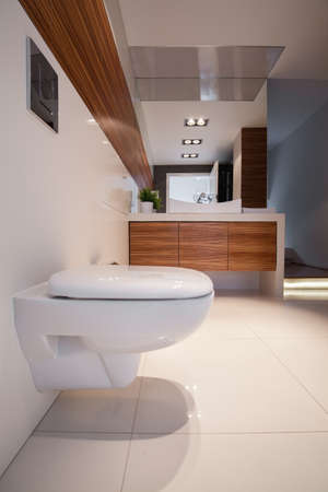 luxurious: Shiny toilet in big luxurious contemporary house