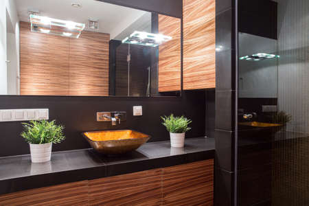 Elegant marble and glass bathroom in luxurious style 스톡 콘텐츠