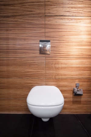 toilet: Toilet in modern design viewed from the front Stock Photo