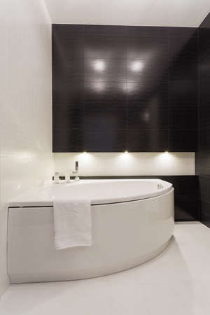 lavish: Stylish elegant black and white empty bathroom