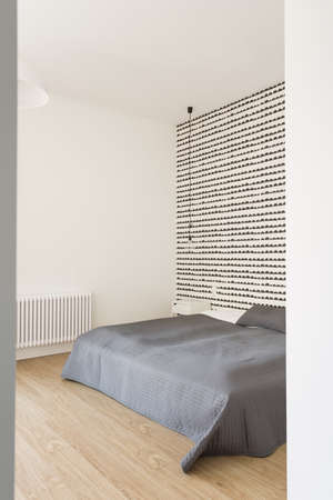 snug: Spacious and light bedroom in the house