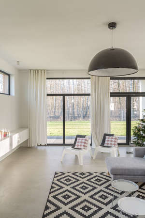 carpet clean: Light and sunny living room in the house