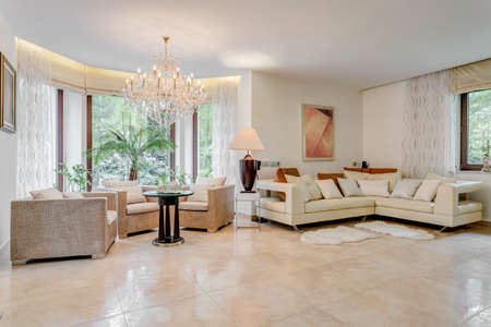 showy: Photo of spacious living room designed in showy way