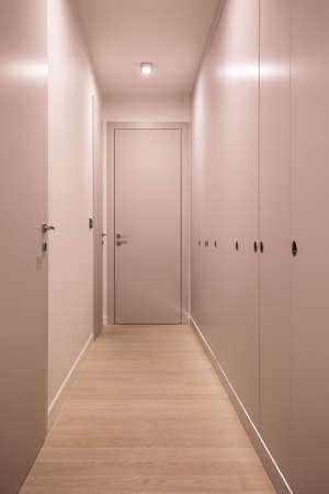 garderobe: Empty and white hall in the flat