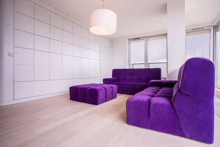 roomy: Minimalist and sunny living room in the flat