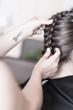 hair style: Professional hairdresser creating a braided hairstyle to her client Stock Photo