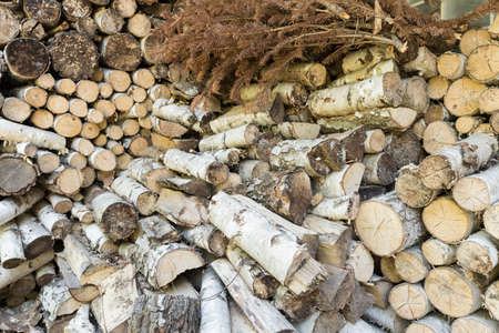 domiciles: Close up of small pieces of dry wood to fireplace Stock Photo
