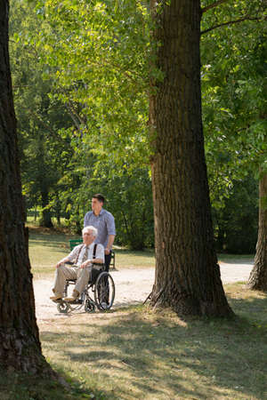 elder tree: Disabled man and assisting person in the park