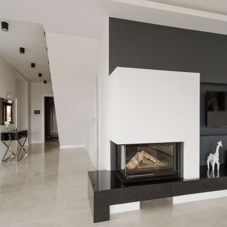 the residence: Close-up of designed fireplace in modern residence
