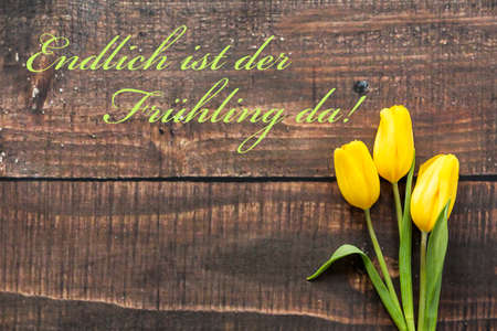 Yellow tulips and a German writing on a plank table