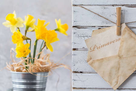 primavera: Picture of a bunch of daffodiles and an envelope with a word primavera inside Stock Photo