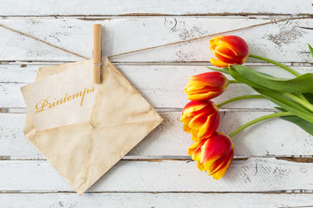 est: Yellow and red tulips and card in envelope hanging on thin rope, white wooden background Stock Photo