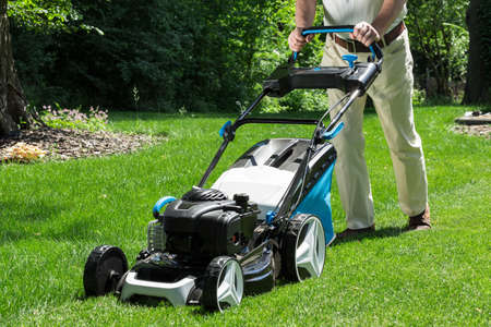 bush trimming: Lawnmower is being used by gardener for mowing grass