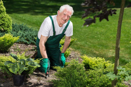 Smiling male gardener is planting nice flowers