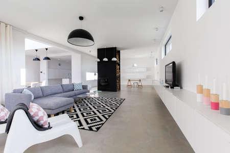 salon moderne de luxe dans la grande maison chère