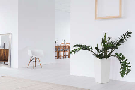 interior room: White interior with mirror, new chair, wood frame hanging on wall and plant in decorative pot Stock Photo