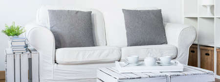 simple meal: Shot of a sofa in a modern living room