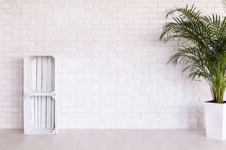 decoratif: regale bricolage fabriqués à partir de boîtes de bois et de plantes en plante décorative debout intérieur blanc avec un sol léger et mur de briques Banque d'images