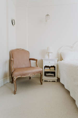 luxurious: Luxurious leather chair in stylish sunny room