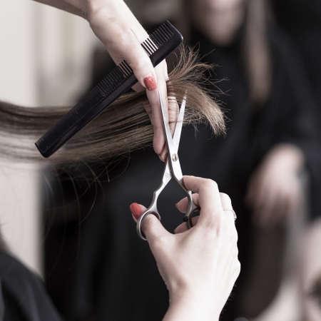 cutting hair: Female hairdresser cutting hair at hair salon