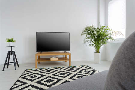 Living Room With Pattern Carpet, Television, Sofa And Decorative Plants  Stock Photo   55595095