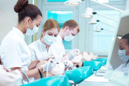 practical: Two pretty dentistry students working together in team on phantom Stock Photo