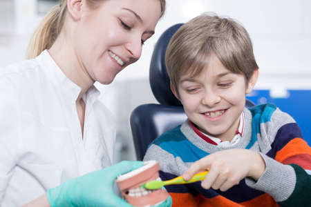 hygienist: Young hygienist holding a jaw model, instructing a little boy how to brush teeth correctly