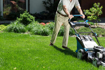 mow: Man in his garden with a lawn mower