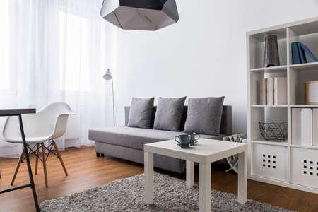 luz natural: habitación muy luminosa en un apartamento moderno, con sofá gris, estante grande, blanco y una mesa de centro blanca que se coloca en una alfombra suave y esponjosa de color beige