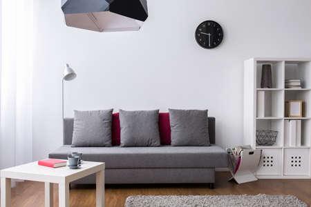 ミニマルな家具と装飾的な項目の微妙なグレーと白のアレンジ、非常に明るいリビング ルームのショット