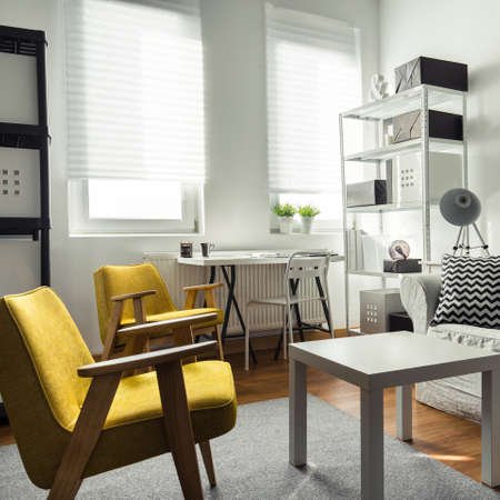 drawing room: Stylish furniture in contemporary drawing room interior
