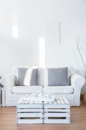 front room: White living room with small sofa for two people. In front of couch white coffee table with tray