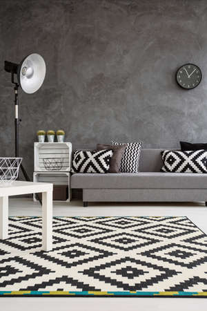 Decor Moderne De Salon Avec Murs Gris Et Tapis Noir Et Blanc Sur