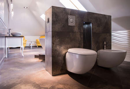 contemporary interior: Photo of spacious luxurious bathroom in new style